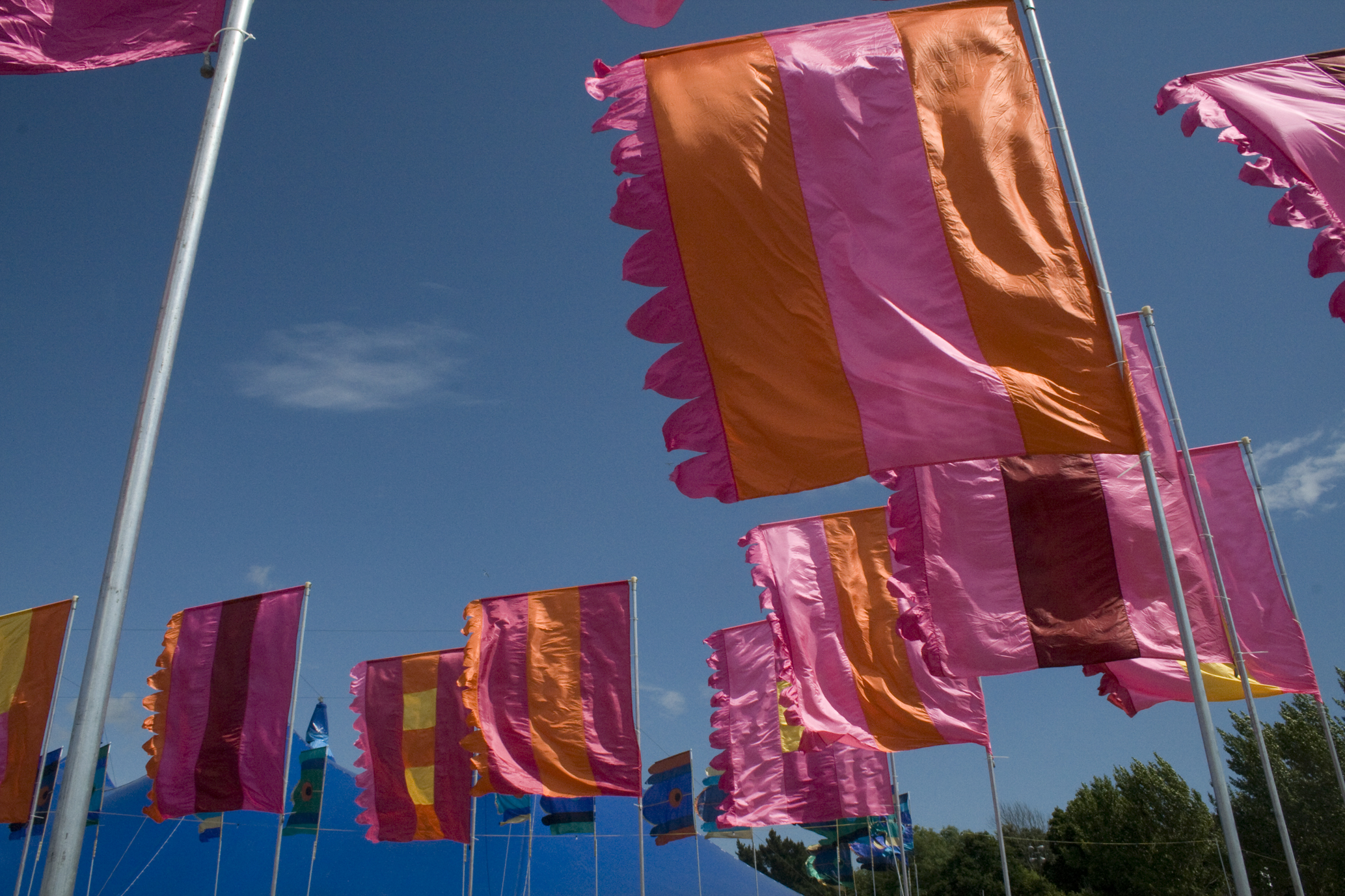 pink orange flags liz cooke flags