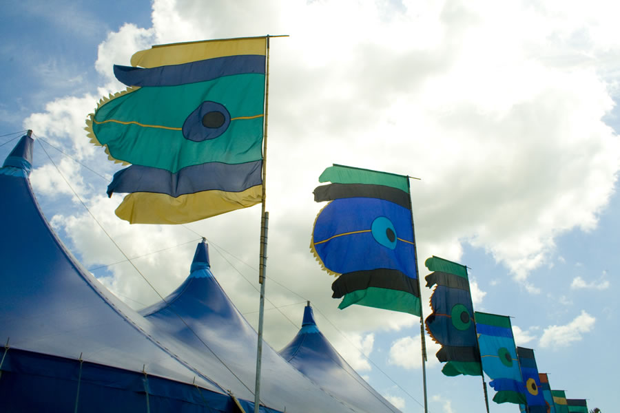 Peacock flags
