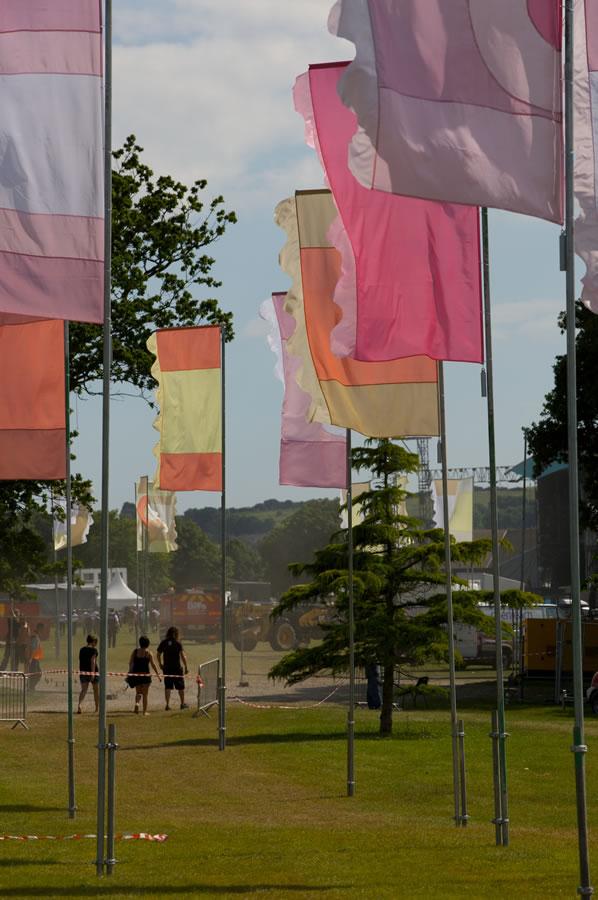 liz 34 liz cooke flags