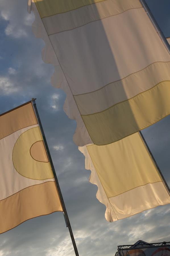liz 45 liz cooke flags