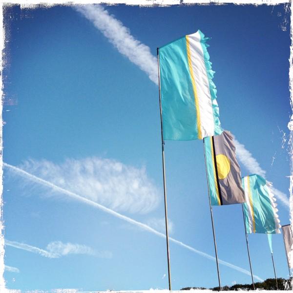 sky set liz cooke flags